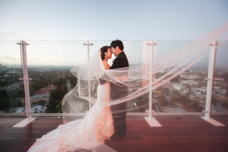 Beverly Hills Rooftop-Vivian Lin Photo