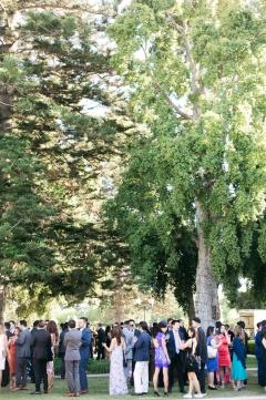 camarillo-ranch-wedding_mc_vivian-lin-photography_701